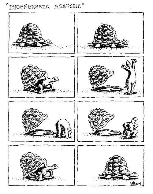 Caricatura de tortuga con su caparazón.  La tortuga camina, abre caparazón, lo levanta y sale de él, se libera, se estira y cuando está mejor vuelve a entrar de nuevo. (metáfora de coraza)